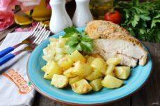 Курица с овощами «Быстрая»